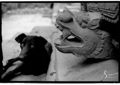 Nepal 003